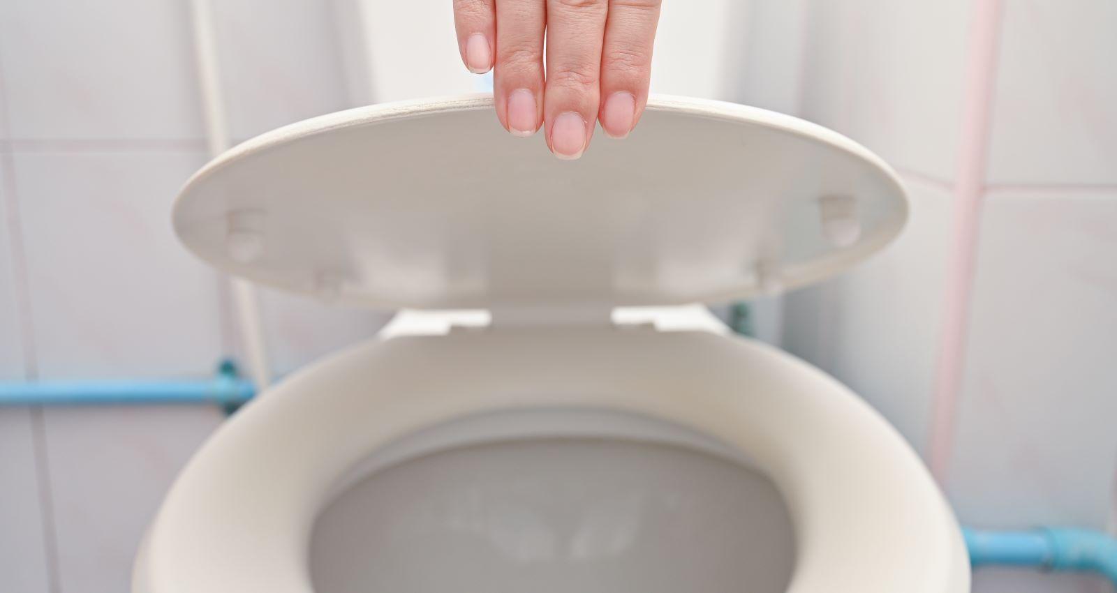 Smart Toilets For Missoula Homes